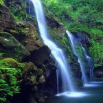 Cascate-Bella-Foresta-HD-1152x2048