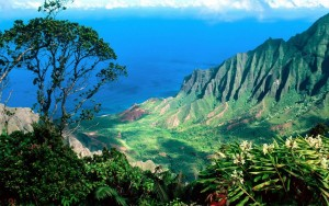 Maui Mountains Large 51addc823bc7d97077