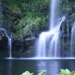 nemo-falls