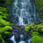 6929042-rainforest-waterfall
